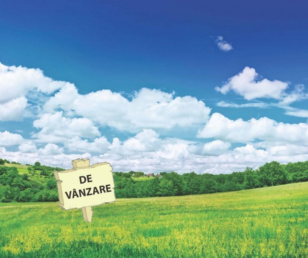 terenuri de vanzare